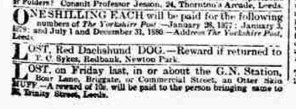 1891 dog lost