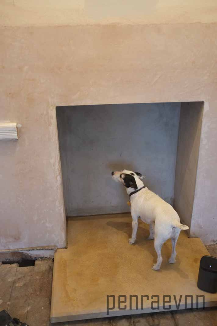Bingley inspecting our work